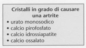 acido urico alto cosa devo fare huevas de merluza acido urico como curar dolor de acido urico